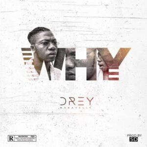 Drey why artwork