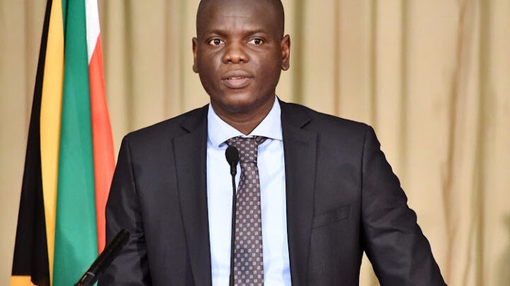Ronald Lamola Biography: Age, Net Worth, Wife, Contact Details, Qualifications, Salary, Home Language
