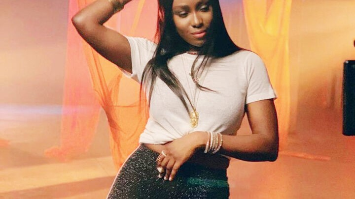 Tolani Otedola Biography: Age, Net Worth, Mother, Wiki, Pictures, Boyfriend, Date Of Birth, Songs, Instagram