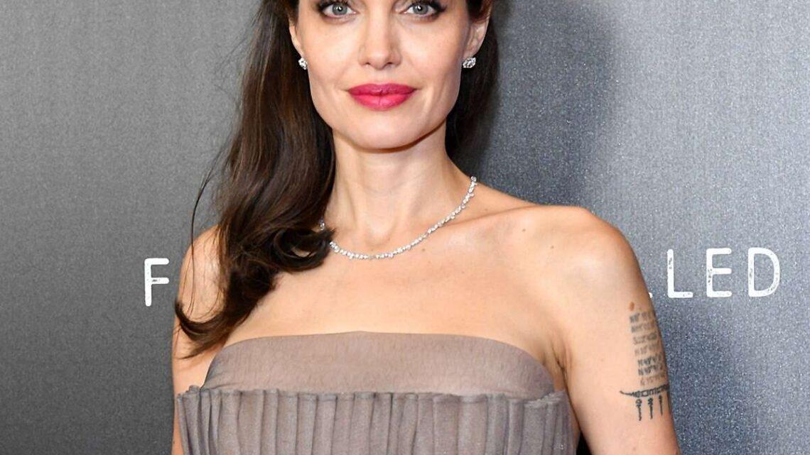 Angelina Jolie Biography: Net Worth, Husband, Age, Movies, Kids, Height, Children, Wikipedia, Instagram, Brother, Daughter