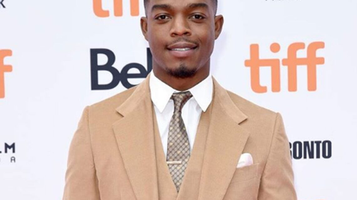 Stephan James Biography: Movies, Height, Brother, Wife, Age, Wikipedia, Instagram, Parents, Girlfriend, TV Shows